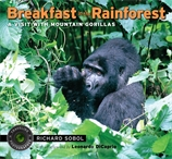 Breakfast in the Rainforest